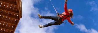 What happens to your body in free fall?